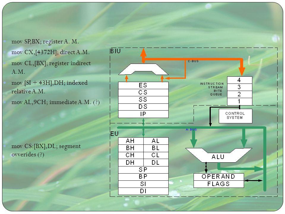 mov SP,BX; register A. M. mov CX,[4372H]; direct A.M. mov CL,[BX]; register indirect A.M. mov [SI + 43H],DH; indexed relative A.M.